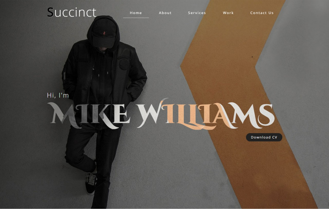 Succinct a Personal Category Bootstrap Responsive Web Template