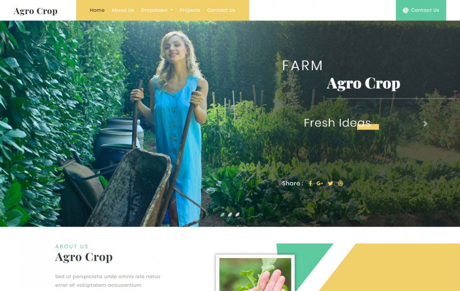 Agro Crop Agriculture Category Bootstrap Responsive Web Template