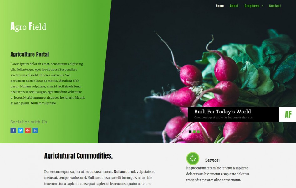 Agro Field Agriculture Category Bootstrap Responsive Web Template
