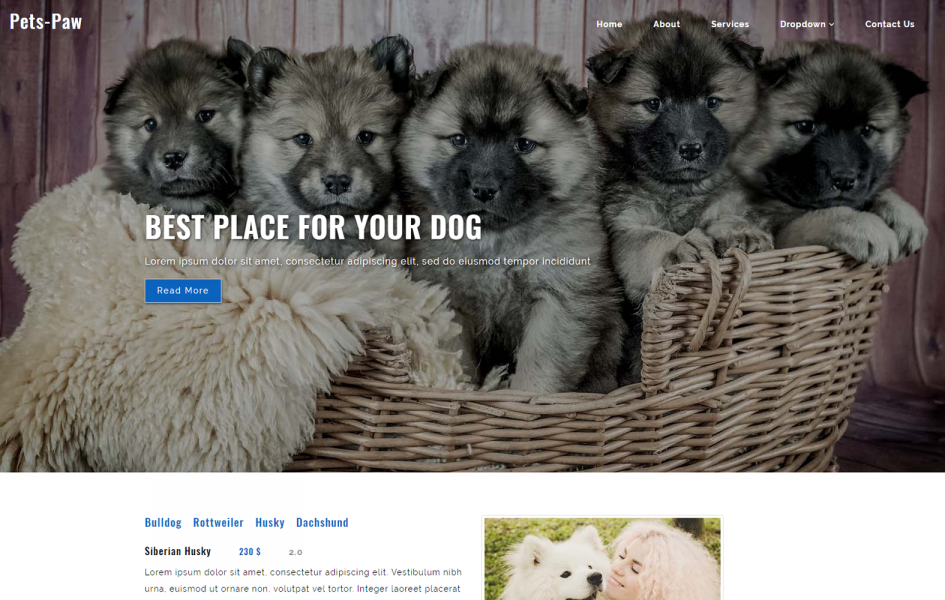 Pets Paw an Animals Category Flat Bootstrap Responsive Web Template