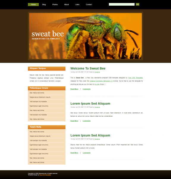 Sweat Bee Templates