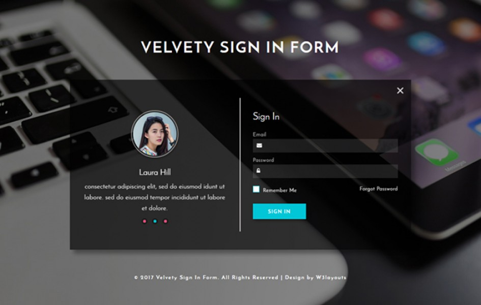 Velvety Sign In Form a Responsive Widget Template